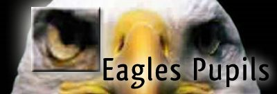 Eagles Pupils logo