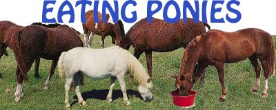 Eating Ponies logo