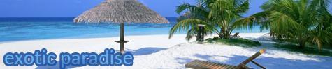 Exotic Paradise logo